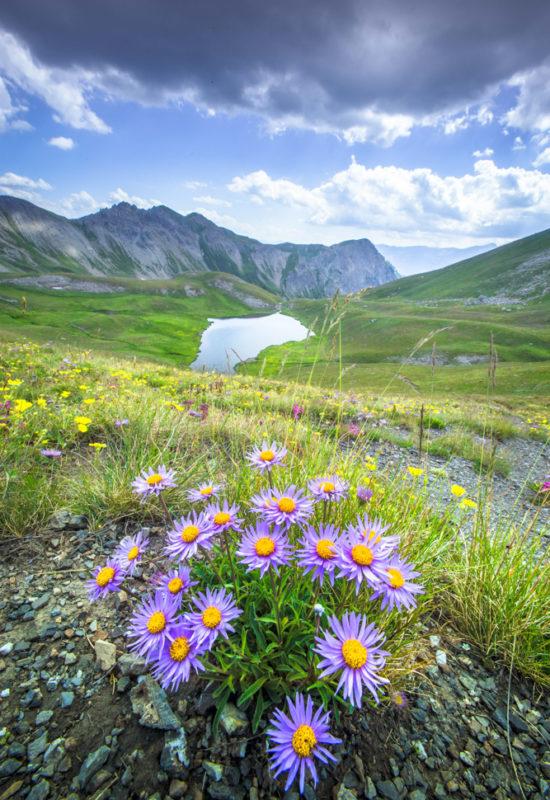 stage photo et lac de montagne dans le Queyras