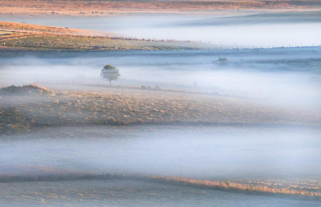 Plateau de l'Aubrac, les brumes matinales