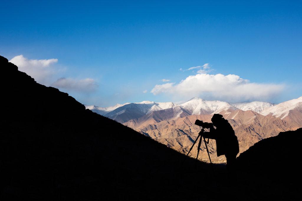 Un oeil sur la Nature   LADAKH – La panthère des neiges