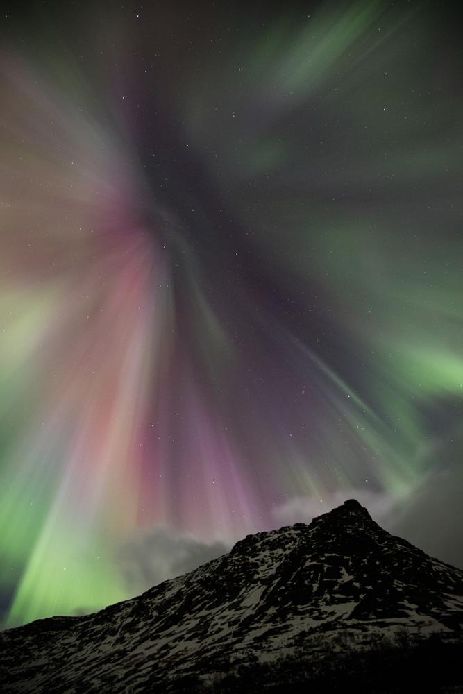 Aurores boréales en corona, pendant un voyage photo en Norvège, dans les îles Lofoten