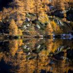 Reflet automnal dans le Grand Paradis