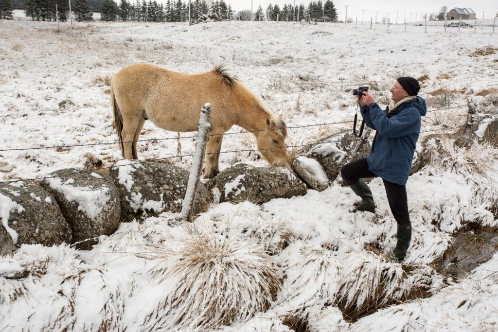Un oeil sur la Nature | FRANCE – L'Aubrac en parure d'hiver