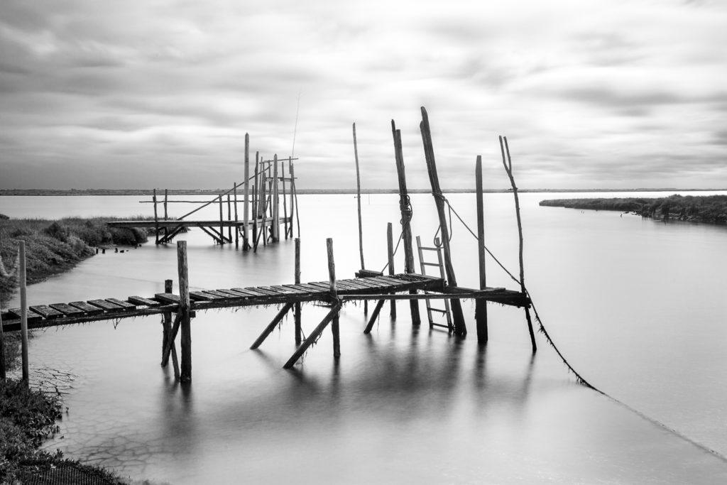 Un oeil sur la Nature   FRANCE – Charente, île d'Oléron