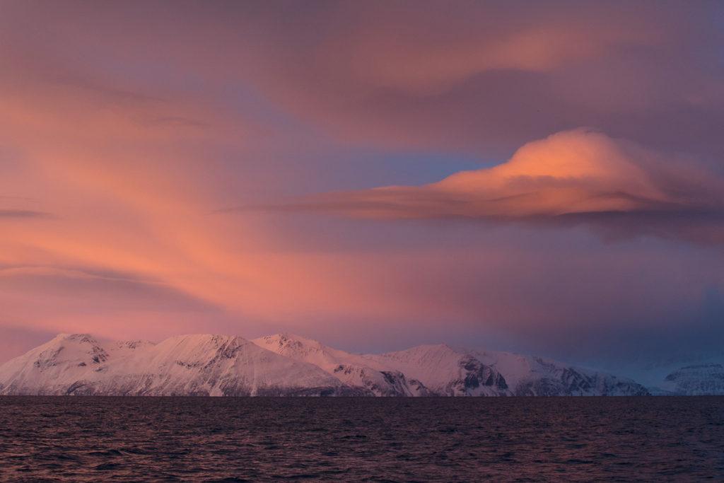 Un oeil sur la Nature | NORVÈGE – Orques et aurores boréales