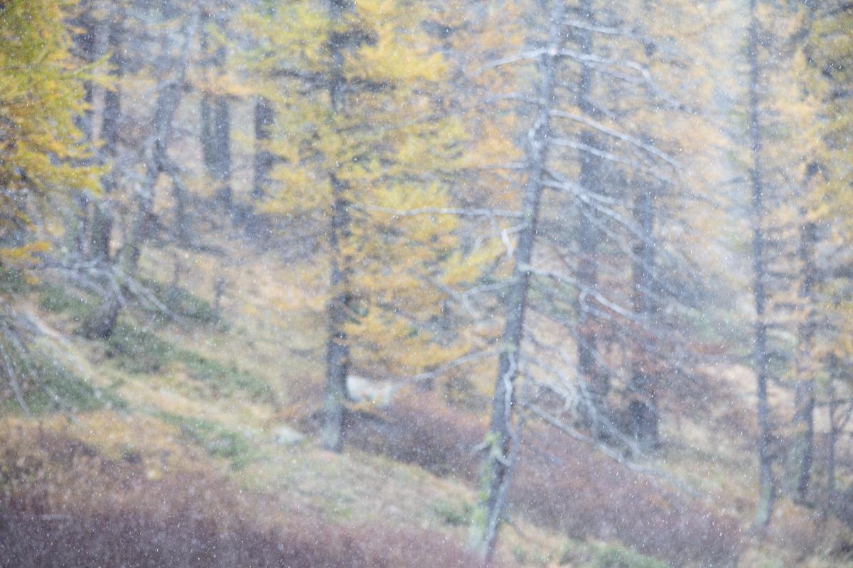 photo créative, stage photo de paysage de montagne, vallée de la Clarée