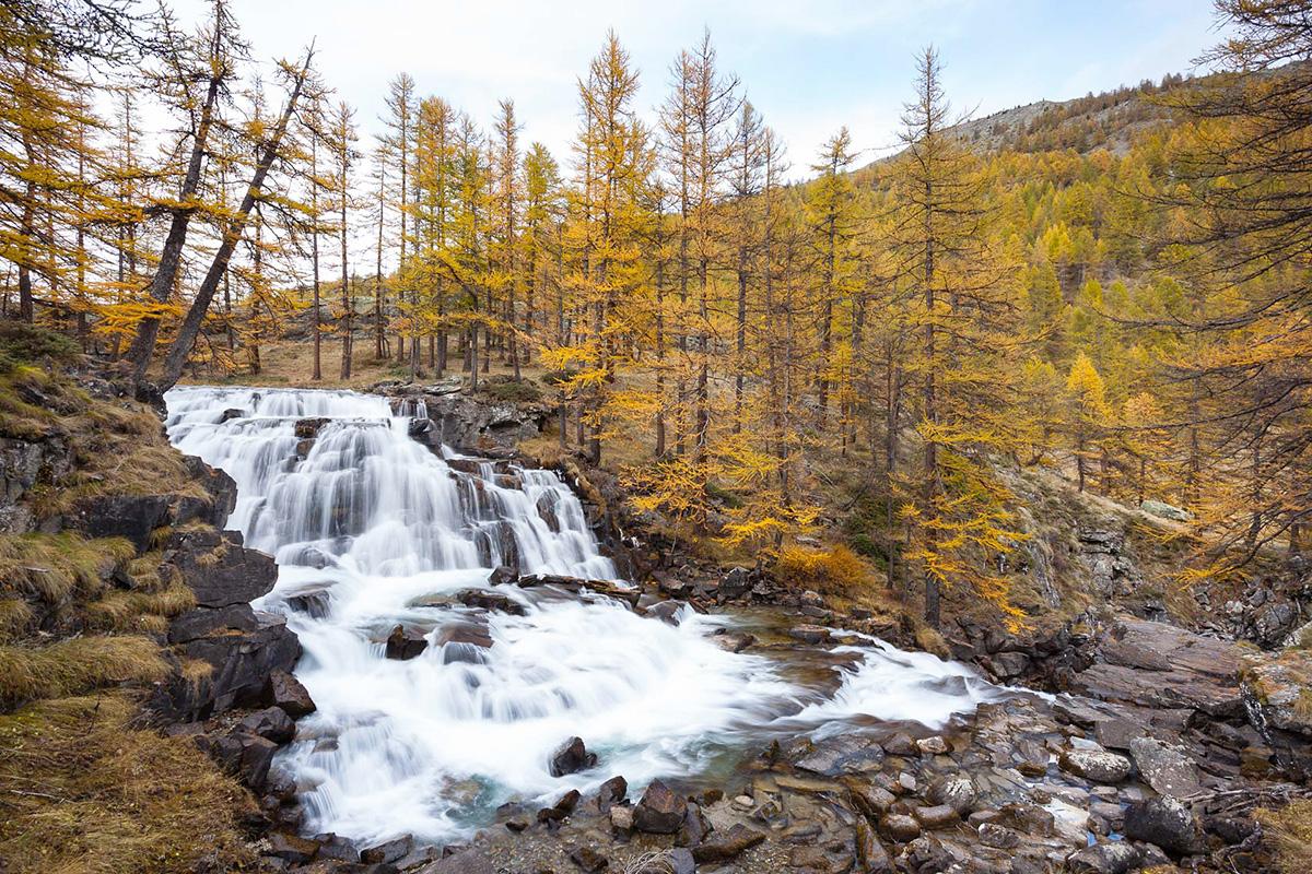 mélèzes en automne dans la vallée de la Clarée